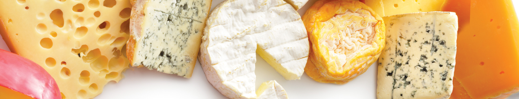 various types of cheeses across a plain colored background