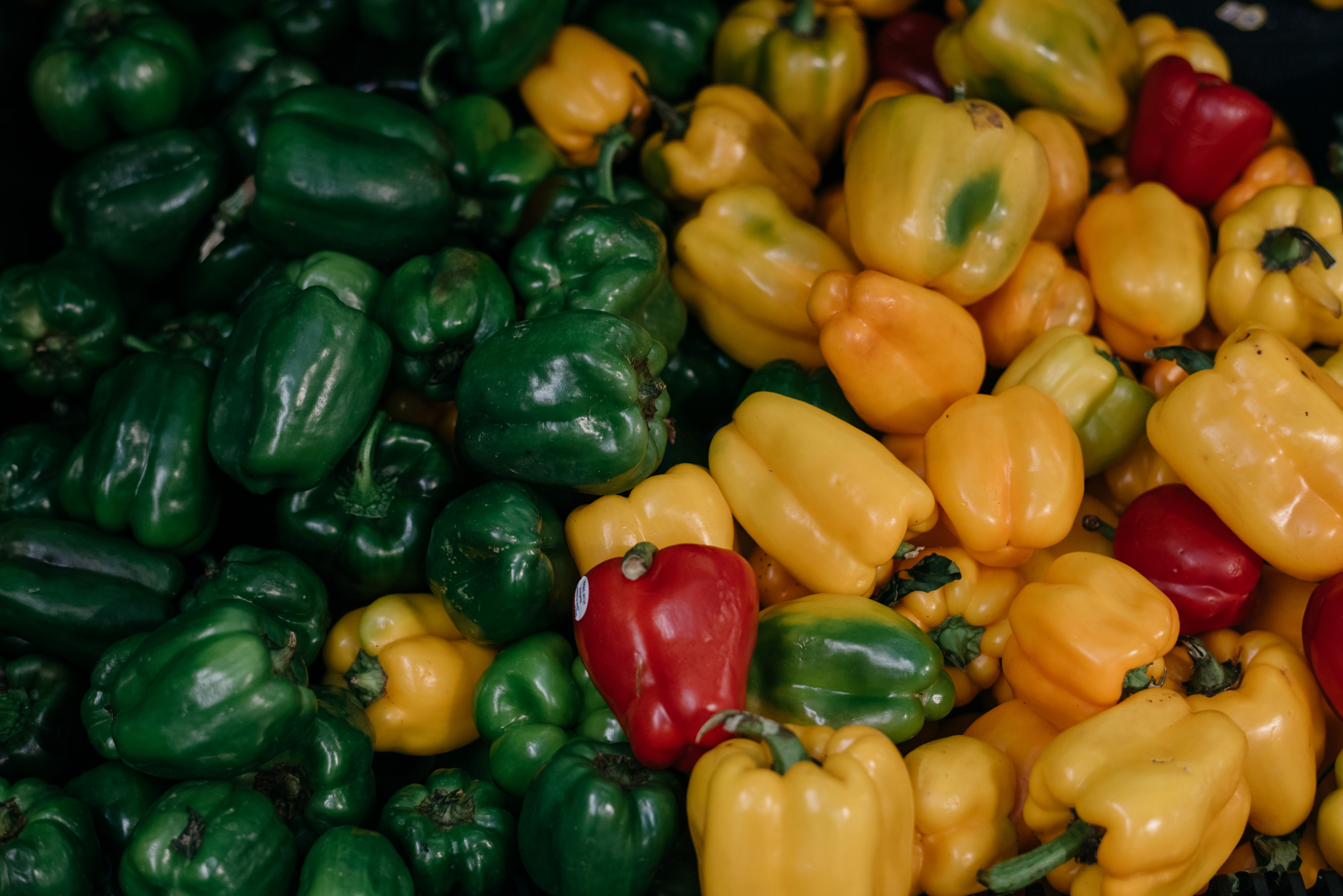 Uploaded Image: /vs-uploads/earth-day/AF Bell Peppers Yellow Green Red.jpg