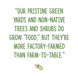 """Our pristine green yards and non-native trees and shrubs do grow ""food,"" but they're more factory-farmed than farm-to-table."""